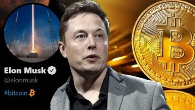 Preview image for Dispatch Weekly - Ross Gerber: How Elon Musk went from crypto hero to crypto hated